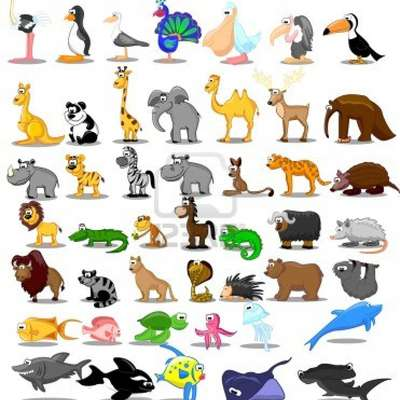 Animals in French!