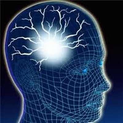 (GCSE - OCR) B6: Brain and Mind