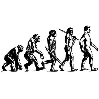 Begriffe der Evolution