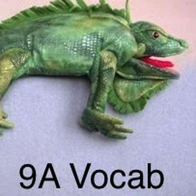 Realidades 9A Vocabulary