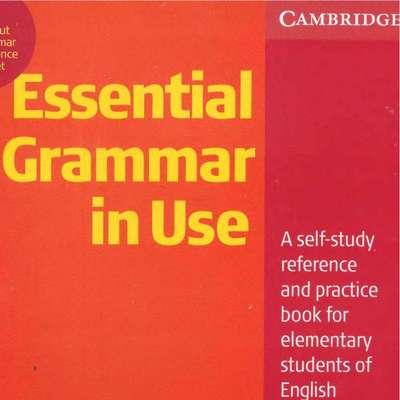 essential grammar in use 中文 版