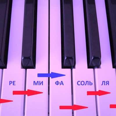 Самое маленькое расстояние между двумя клавишами (черные, белые) — это полутон.
