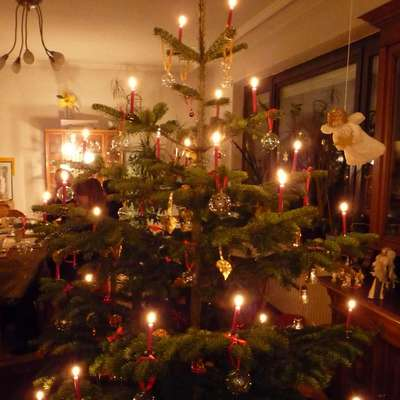 """O Tannenbaum"" (with audio)"