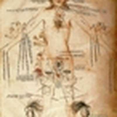As Partes do Corpo