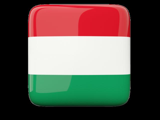 Basic Hungarian