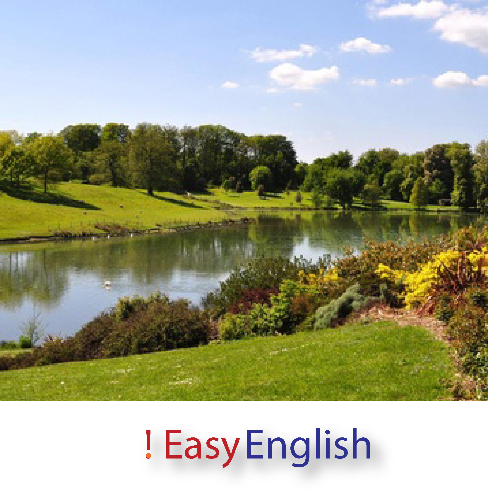 !  Easy  English  •  Grammar
