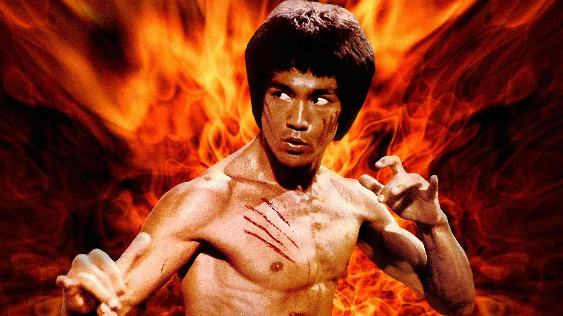 GRE  GMAT  Vocabulary Bruce Lee کانون زبان جهان