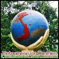 Vietnamese for Dummies ;D