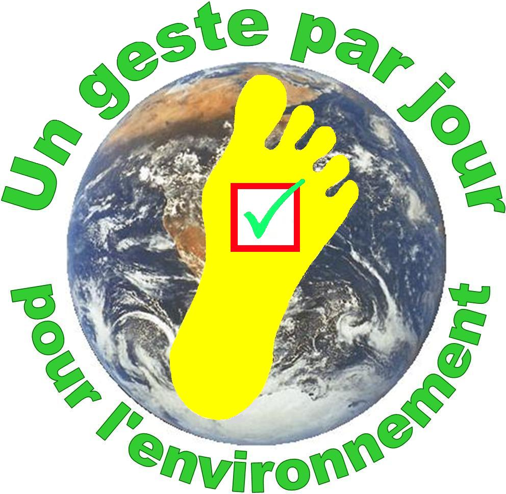 AS French - Environment