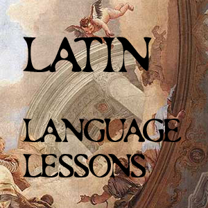 Latin Words!