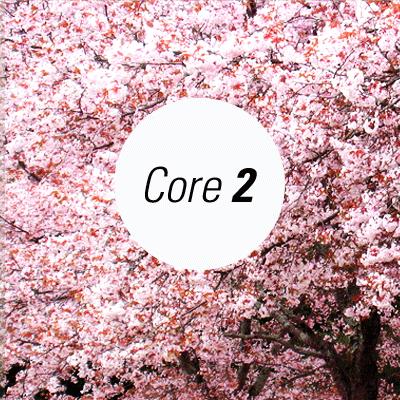 Core 1000 (part 2)