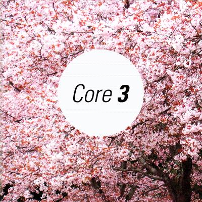 Core 1000 (part 3)