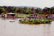 Uirapuru by Waldemar Henrique