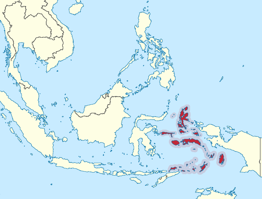 Download this Maluku Islands Map picture