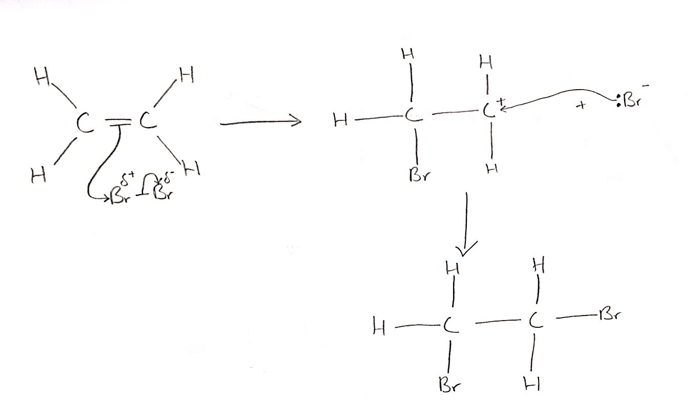 electrophilic addition Such reactions are called as electrophilic addition reactions electrophilic  addition reactions can be defined as the chemical reactions in which electrophile  is.