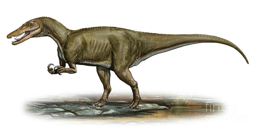Level 8 Animals Of The Mesozoic Dino Memrise